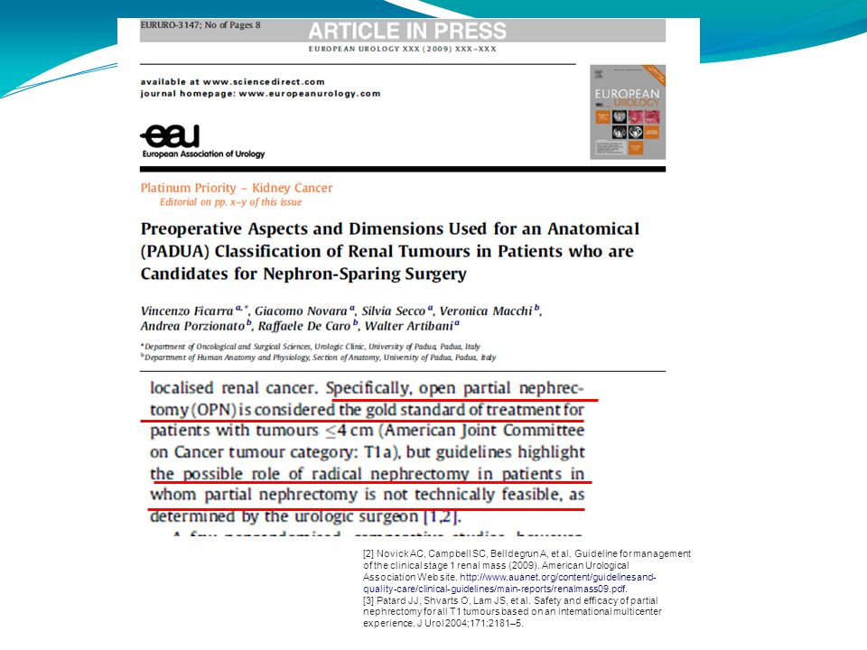 [2] Novick AC, Campbell SC, Belldegrun A, et al